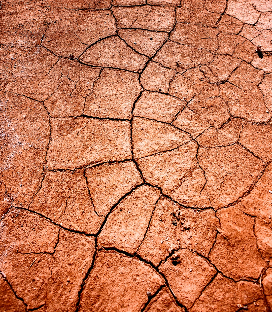 The red clay forms such amazing shapes as it bakes in the hot southern Utah desert.