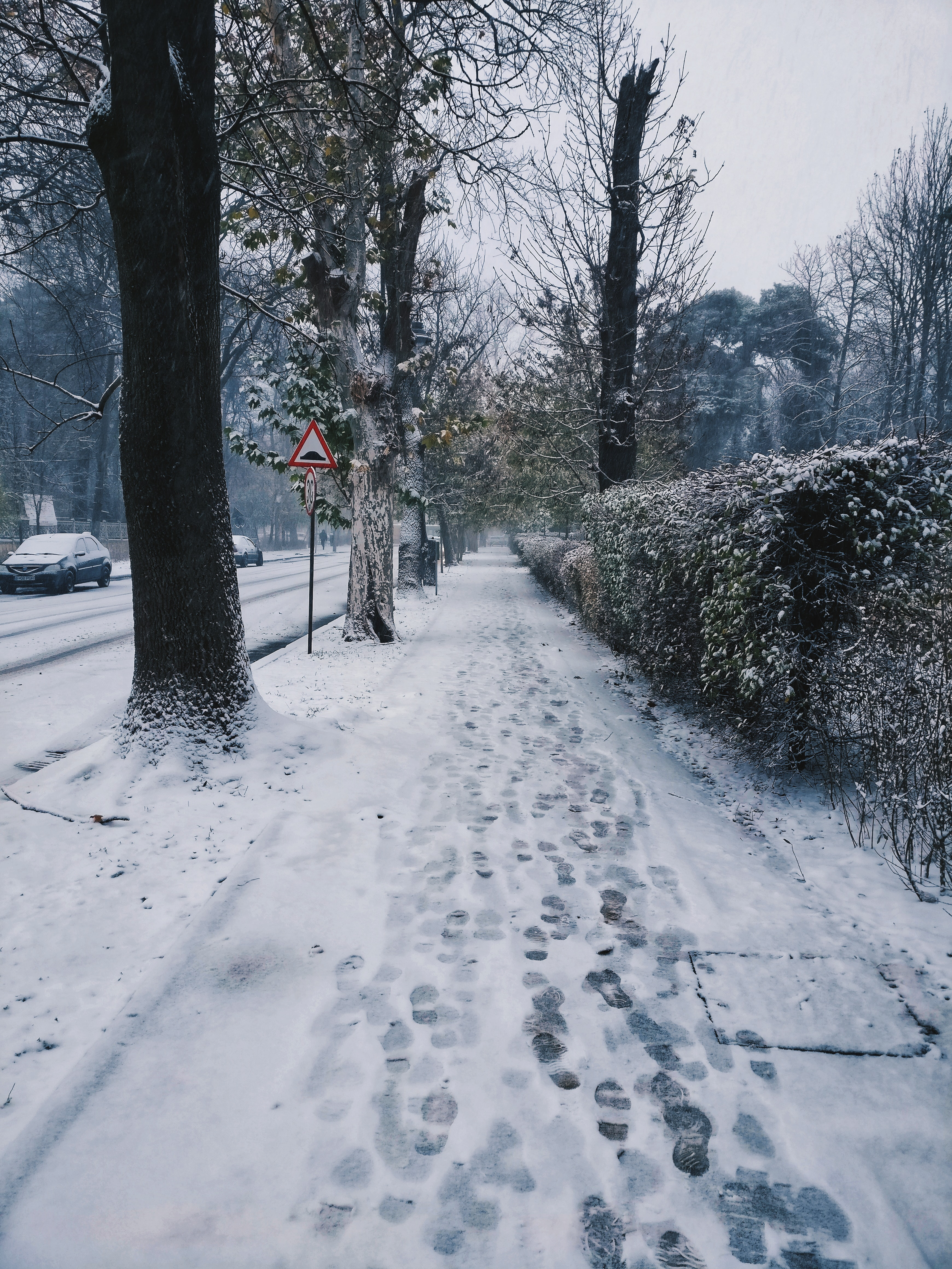 snow filled pathway
