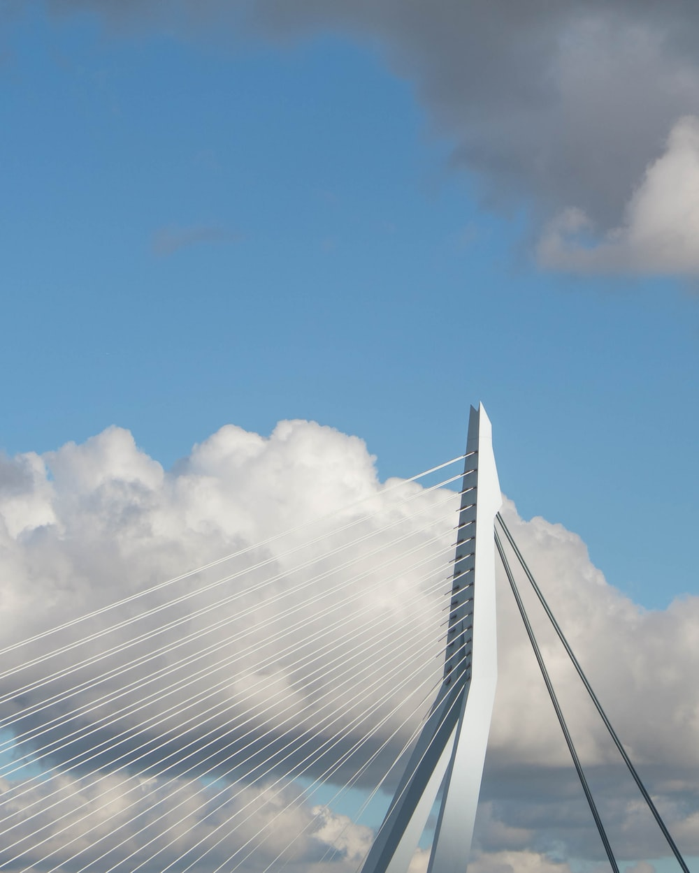 white suspension bridge under white cloud