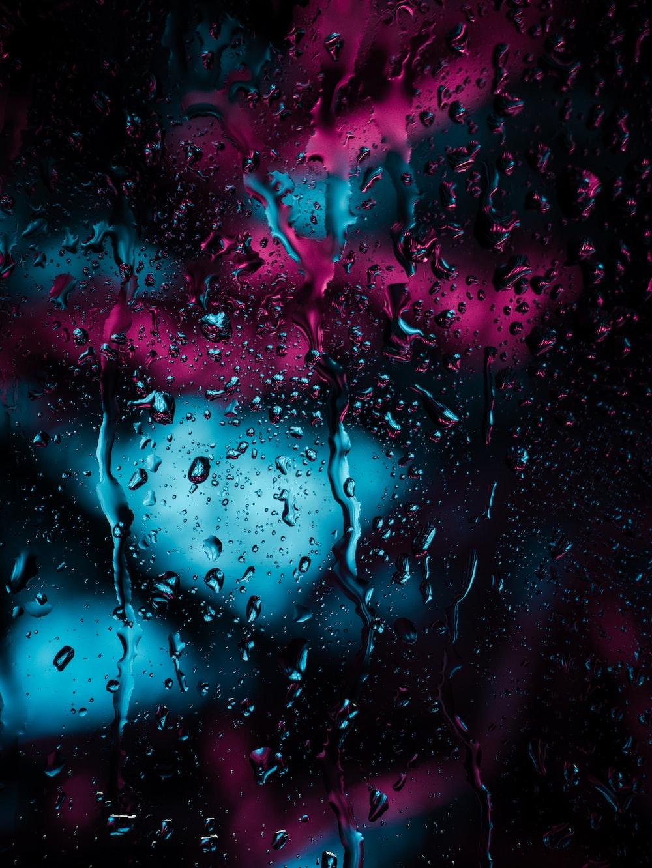 closeup photo of raindrops
