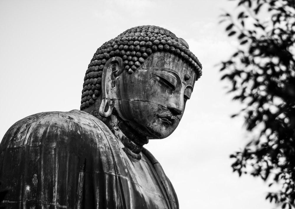 buddha statue photography