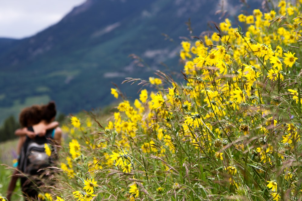 two people hugging beside yellow flower field overlooking mountain outdoors during daytime