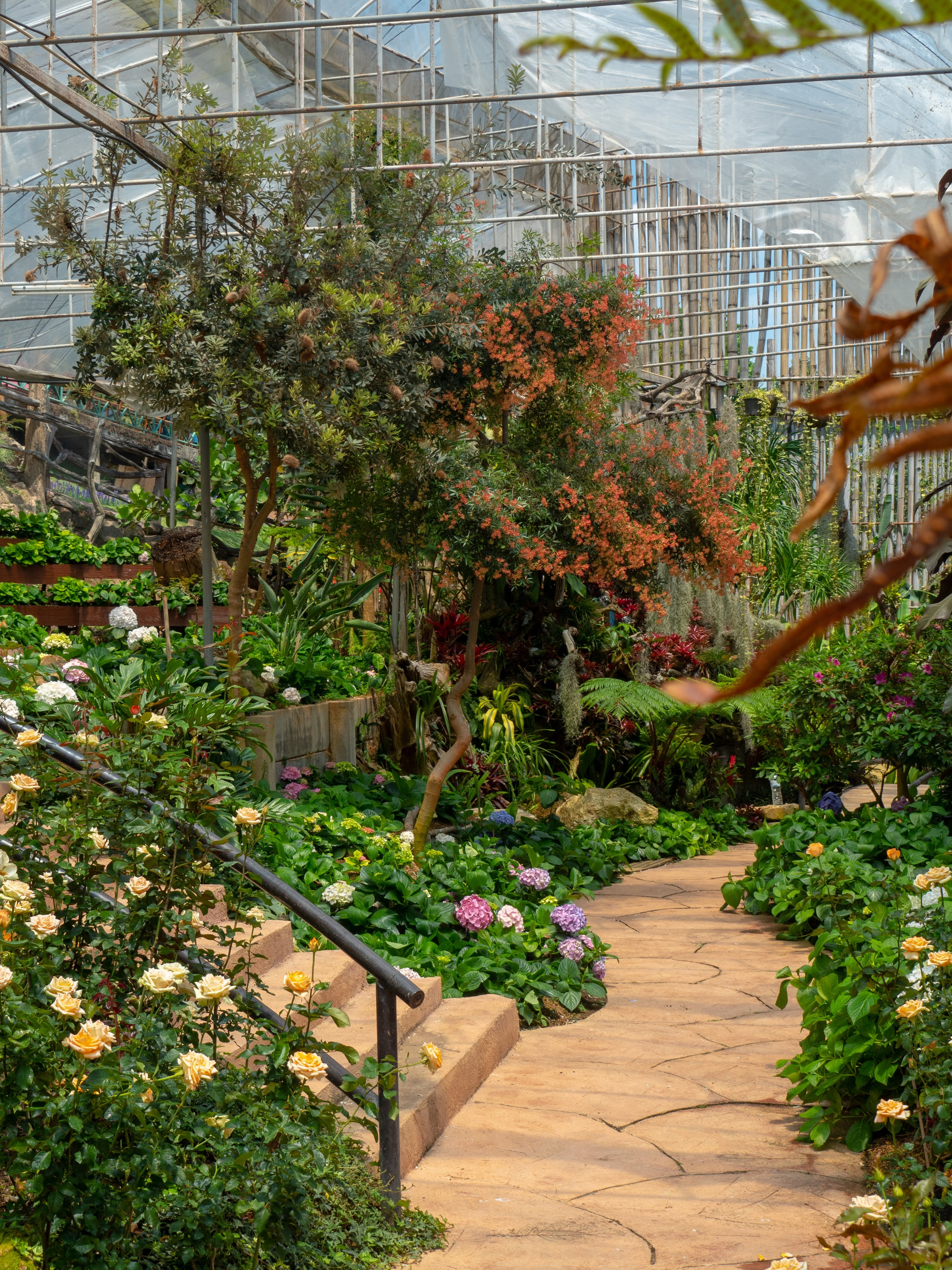 Most Common Garden Planning Mistakes And The Smart Ways To Counter Them