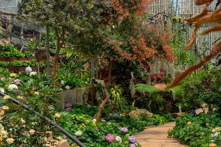 Achieve an Inspired Garden