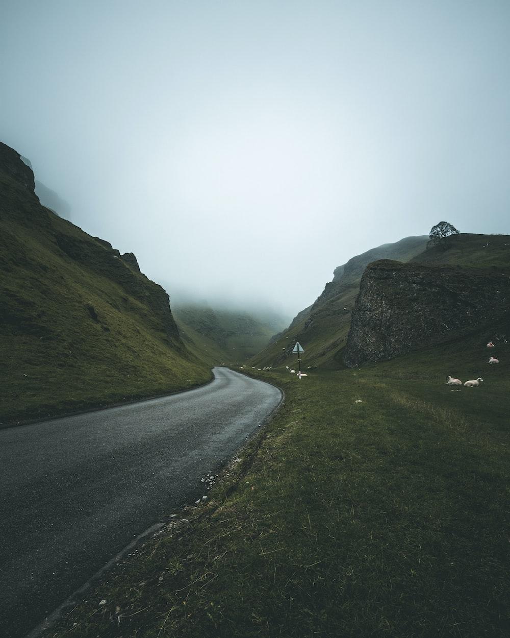 gray asphalt road across foggy mountain