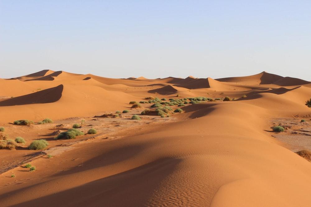 sand dune field