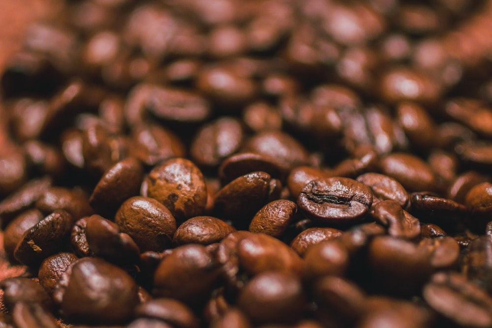 close-up photography of coffee beans