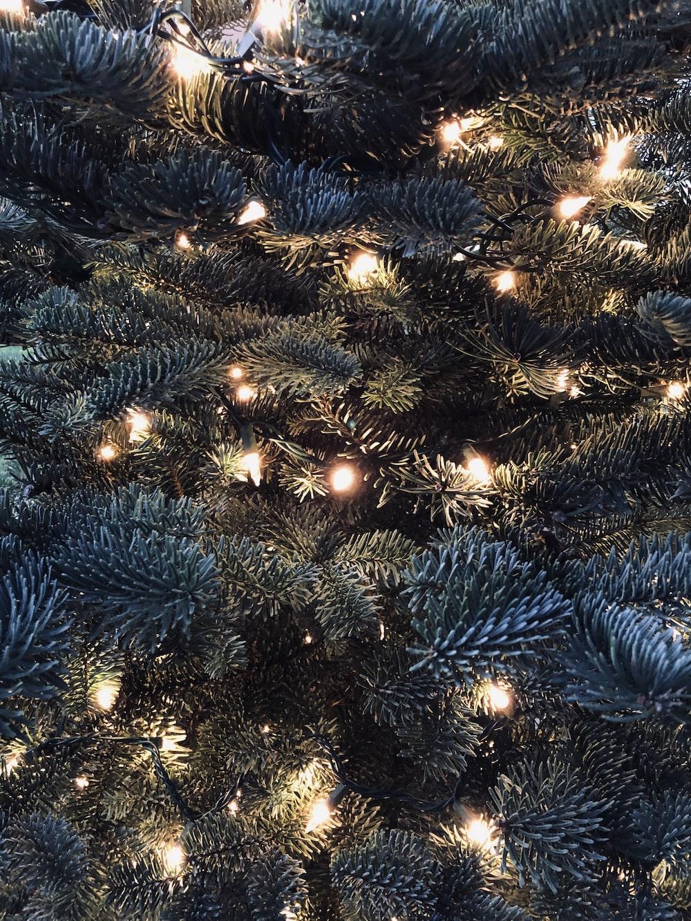 green Christmas tree with LED light