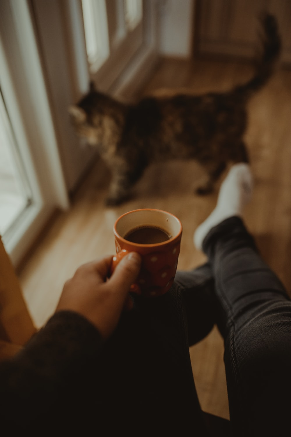 man holds cup of hot beverage near cat