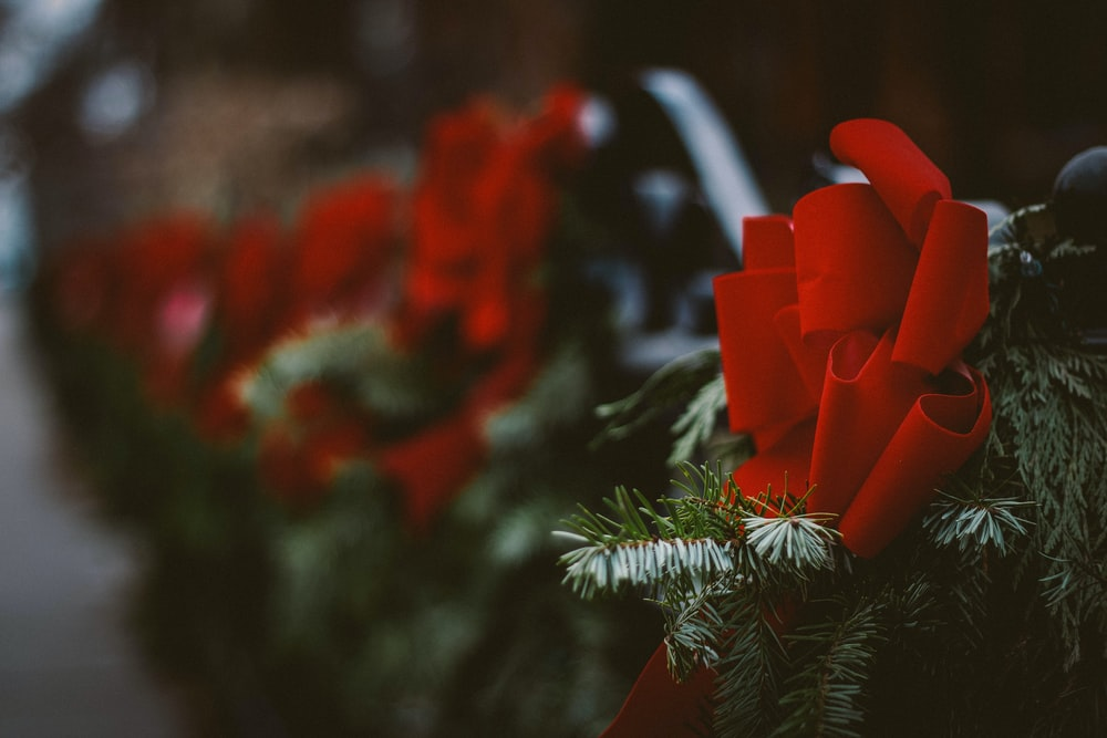 red ribbon in Christmas tree