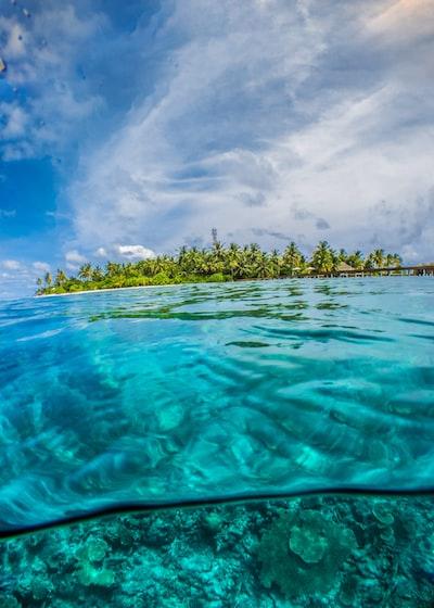 Island split