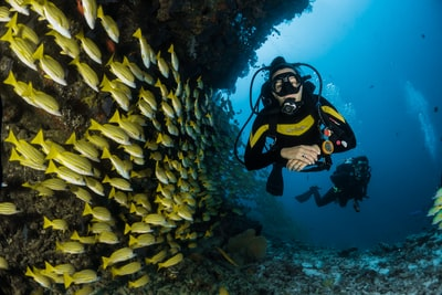 two people scuba diving underwater diving teams background
