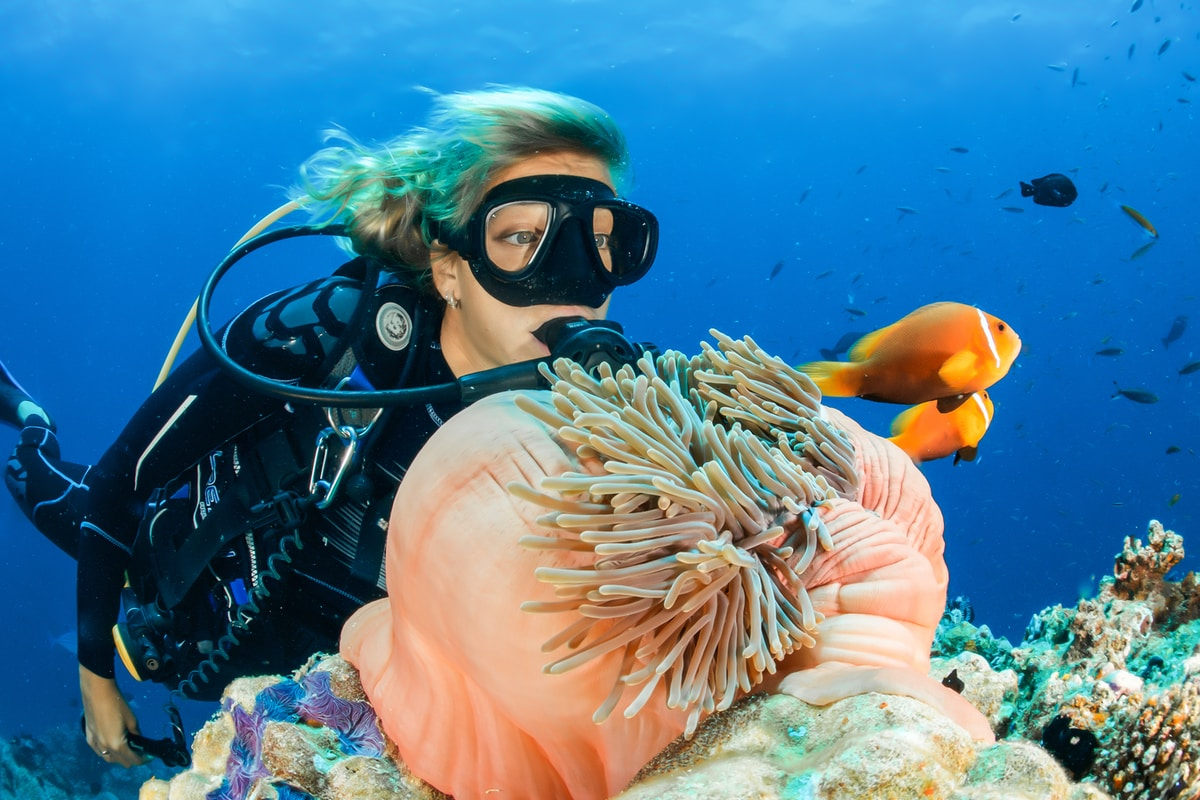 Why Fiji Is the Best Place for Diving in the World?