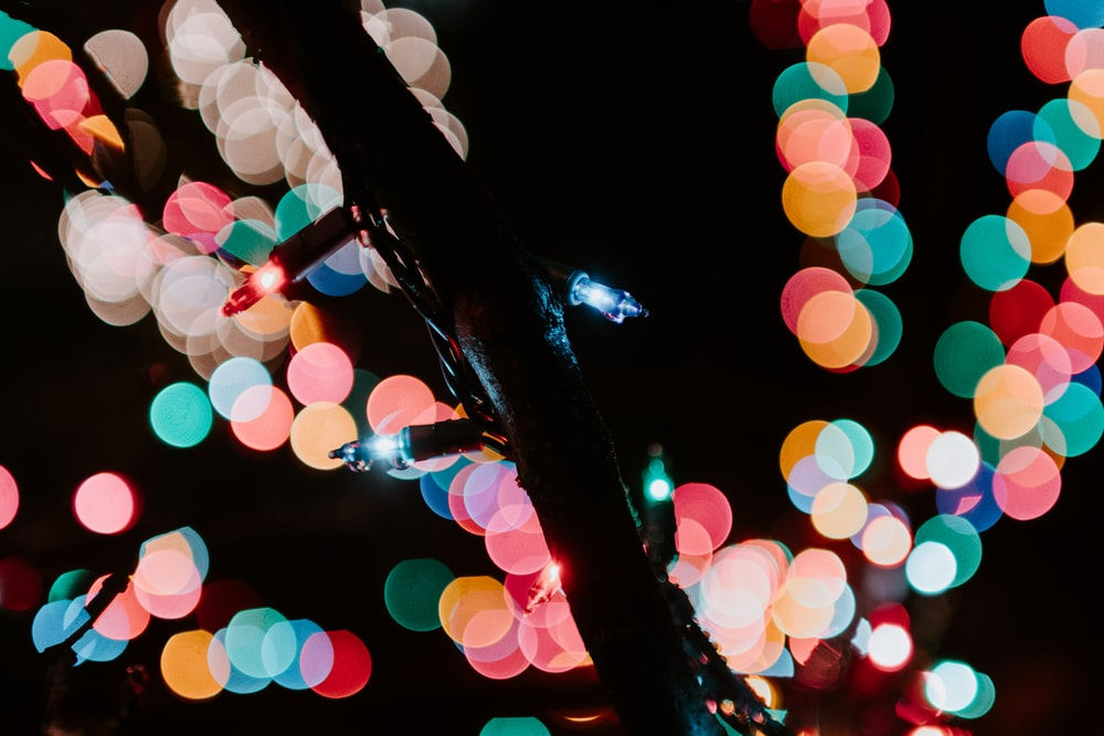bokeh photography of multicolored string lights