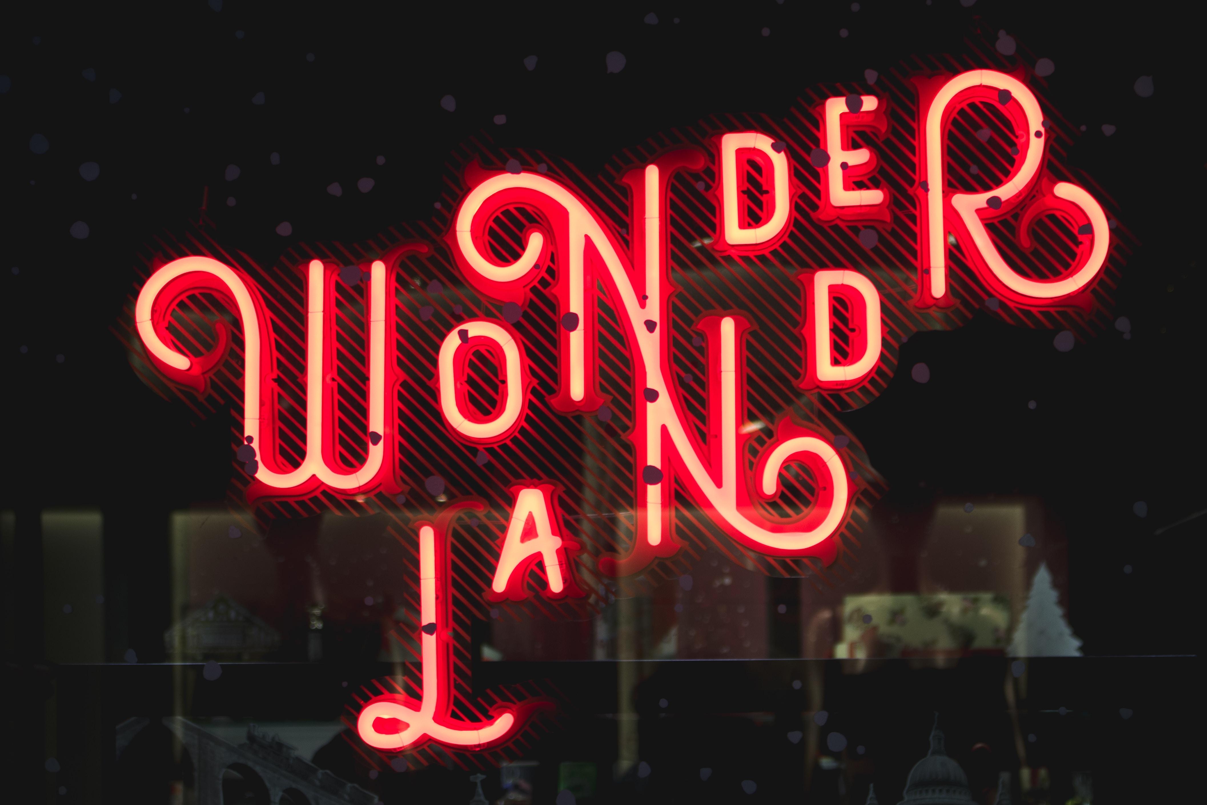 Wonderland neon signage at night