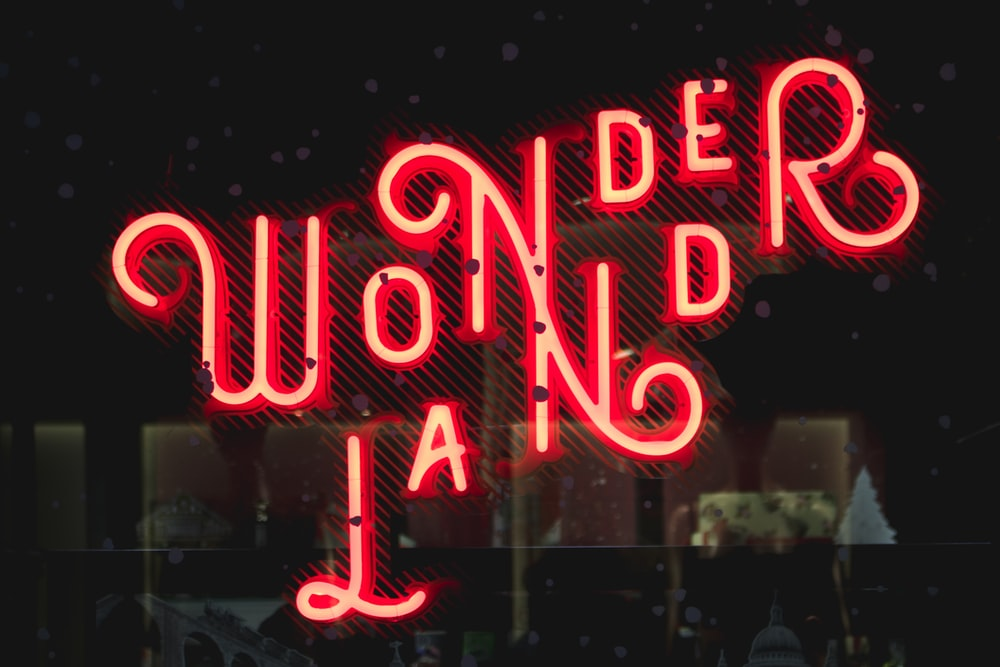 Wonderland neon signage at night