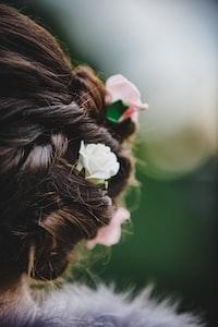 macro shot of flowers
