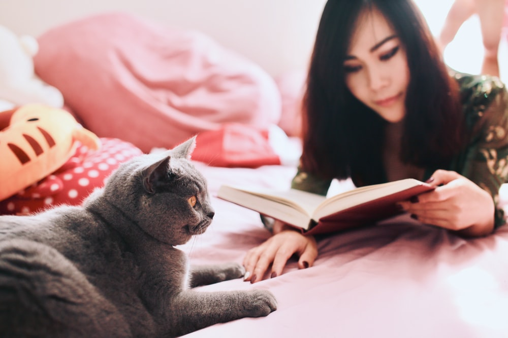 woman reading book near cat