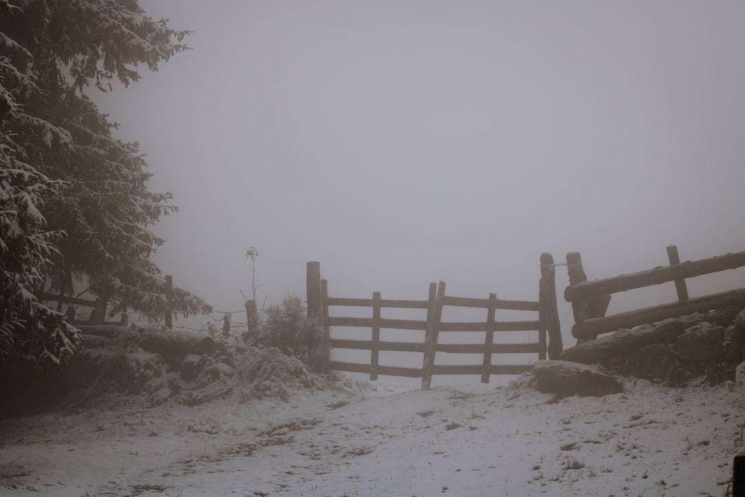 a gate in the fog, Cantal, France