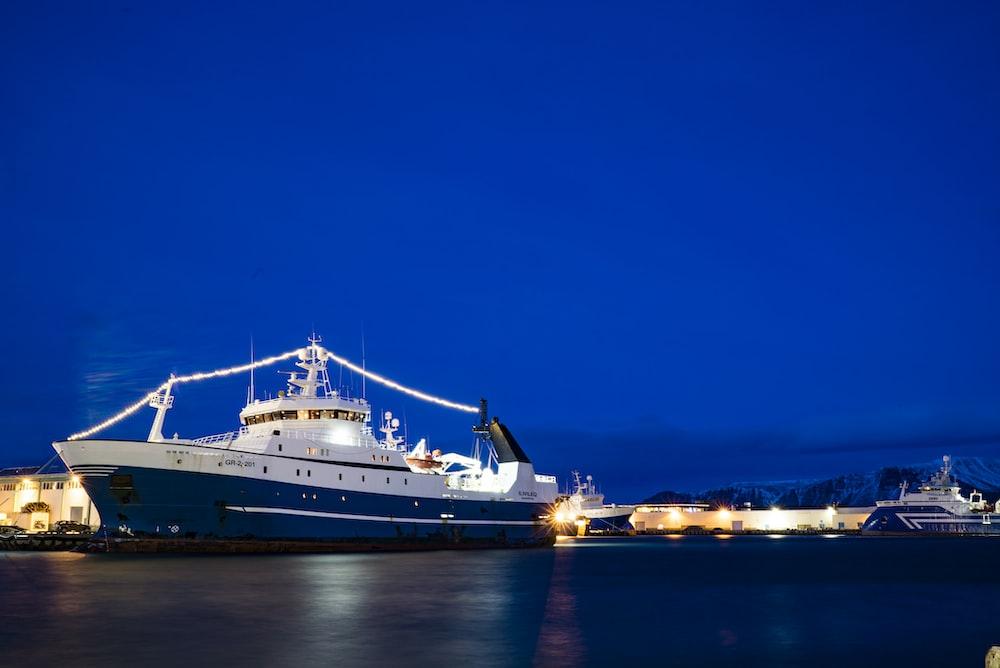 white and blue cruiser ship during daytime
