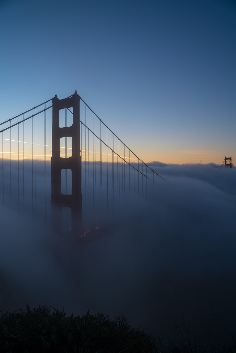 silhouette of full-suspension bridge covered with fog at daytime