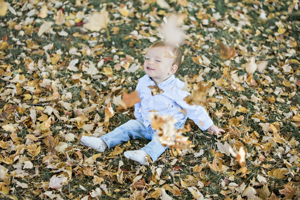 boy sitting on brown dried leaves