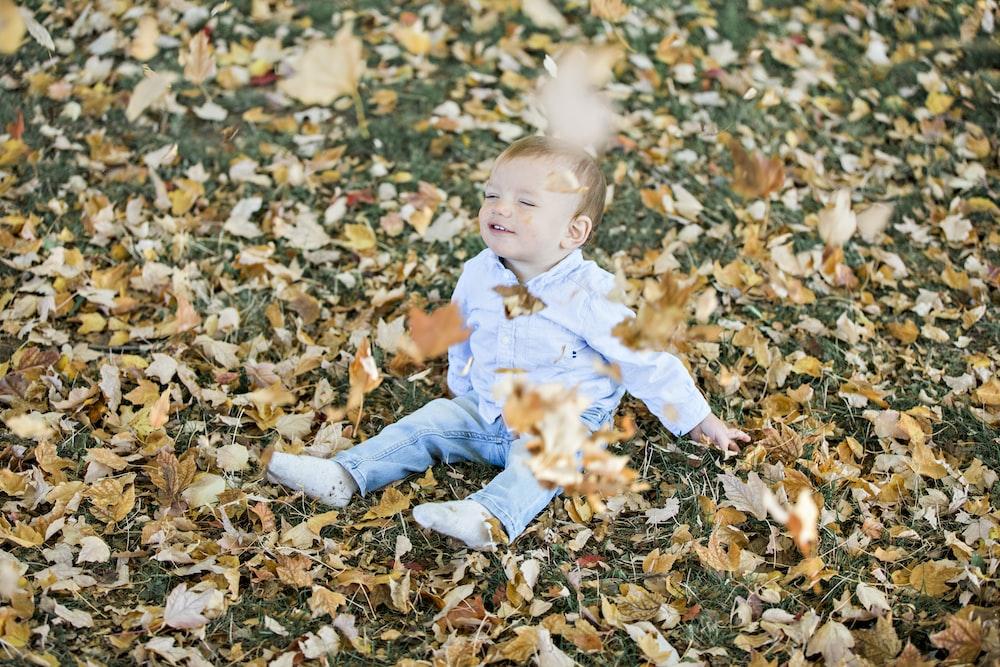 boy sitting on brown dried leaves