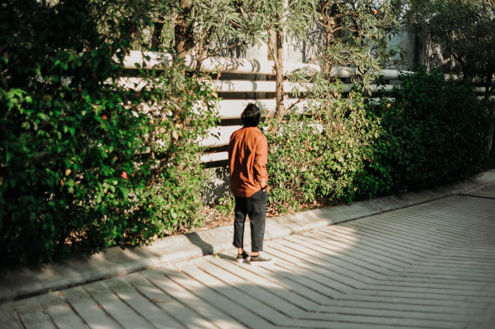 person standing beside wall with vines