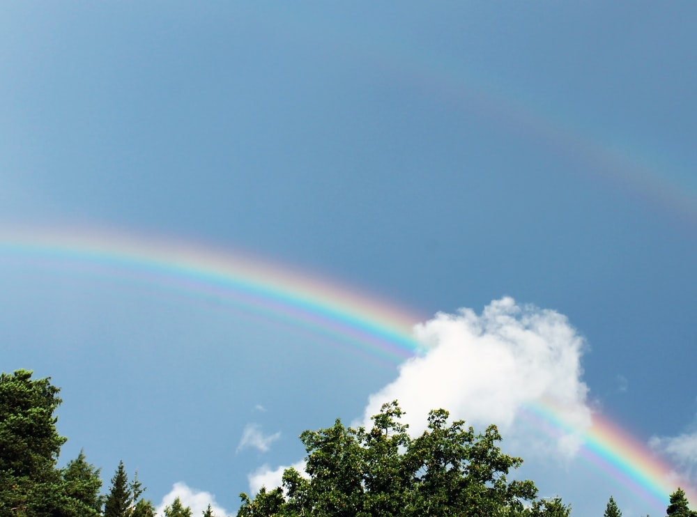 low angle photography of rainbow