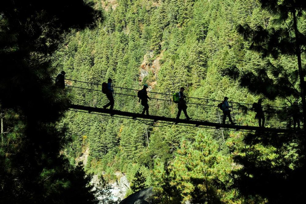 five person walking on hanging bridge