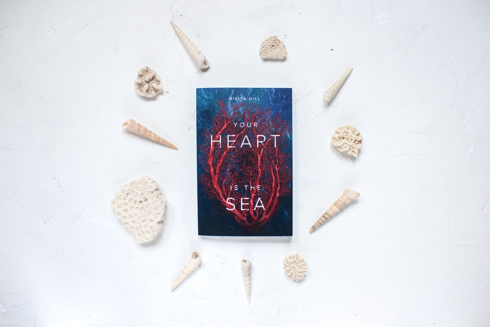 Your Heart is the Sea book surrounded with seashells