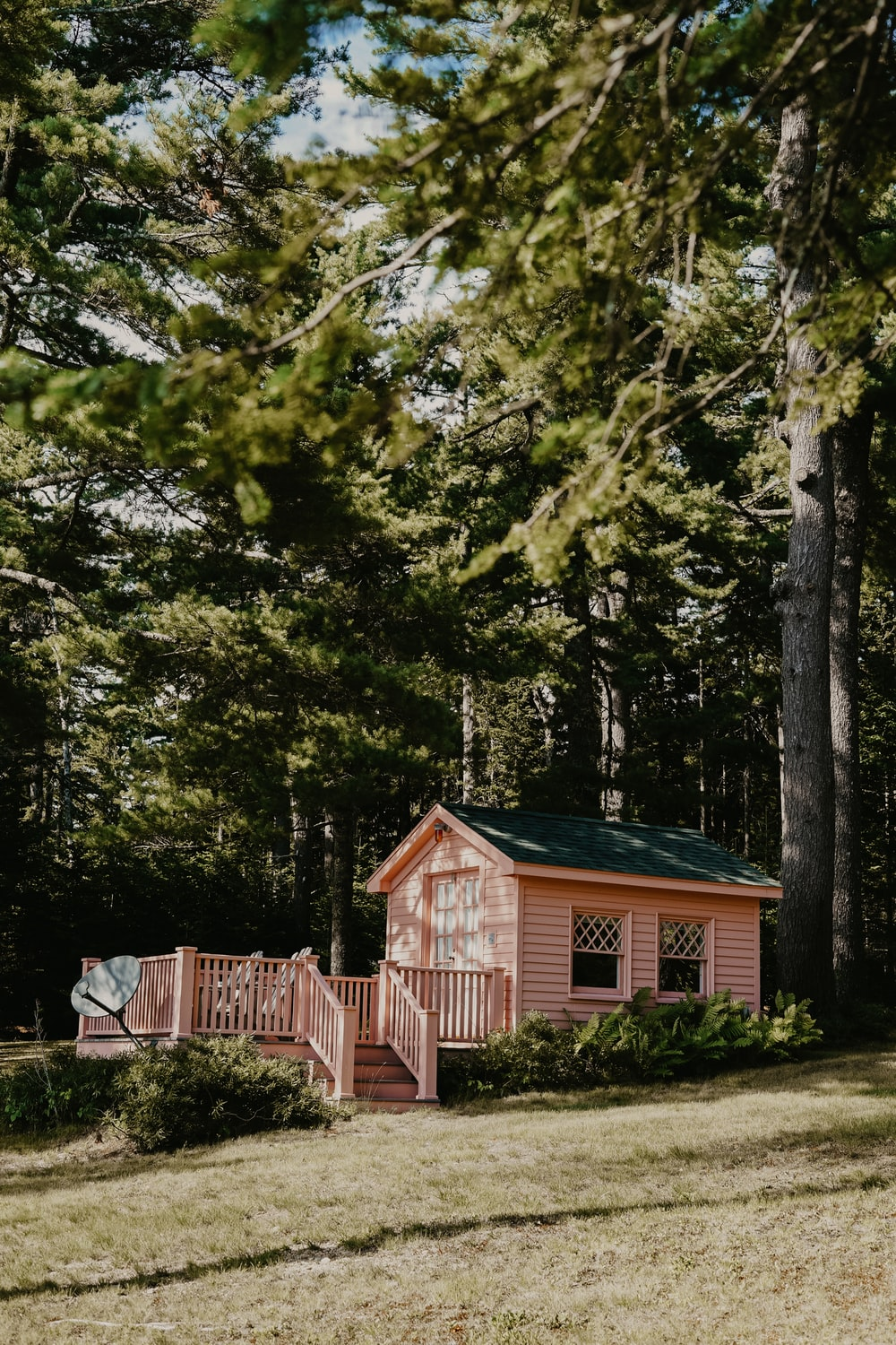 pink painted house in woods