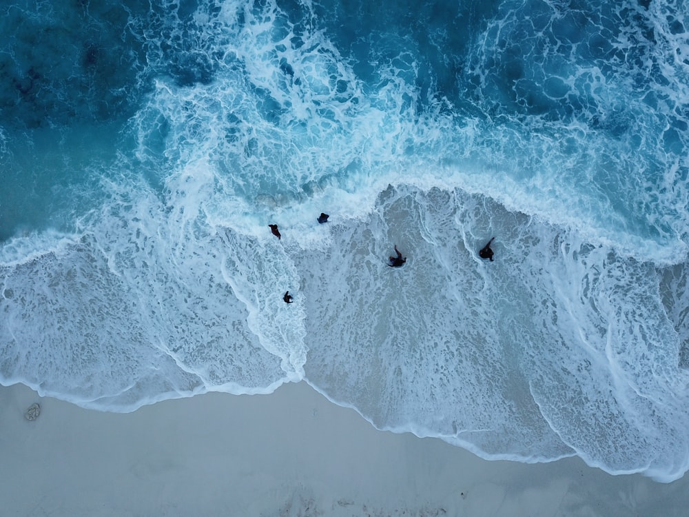 aerial view photography of five seashore