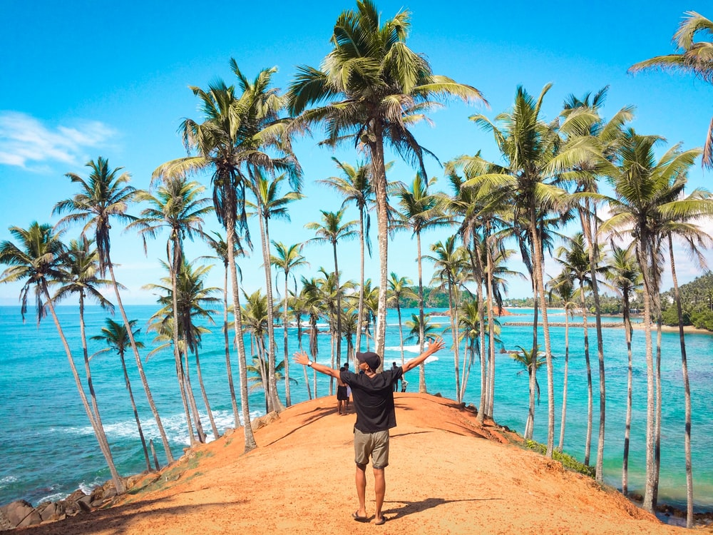 man standing in front of coconut trees