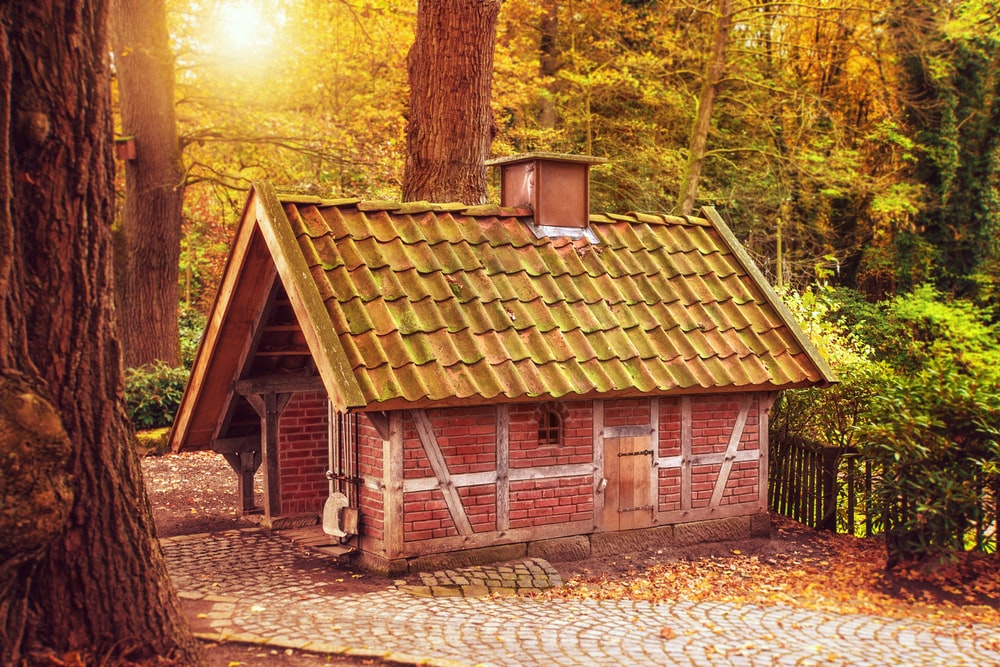 brown cabin at forest