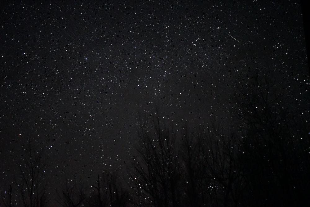 white stars at night