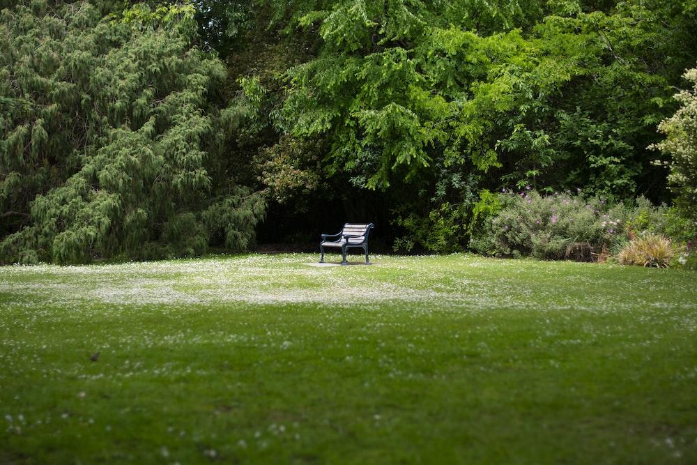 empty black wooden bench on green field