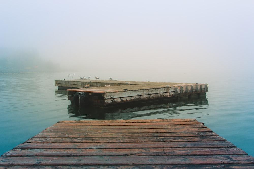 brown dock under white sky