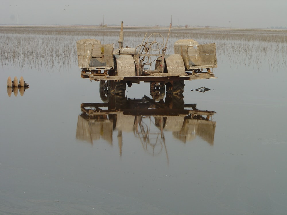 brown cultivator on rice field