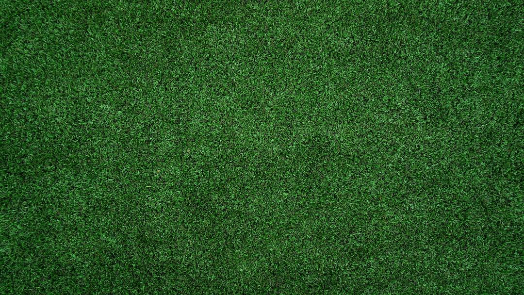 topview of grass lawn photo � free grass image on unsplash