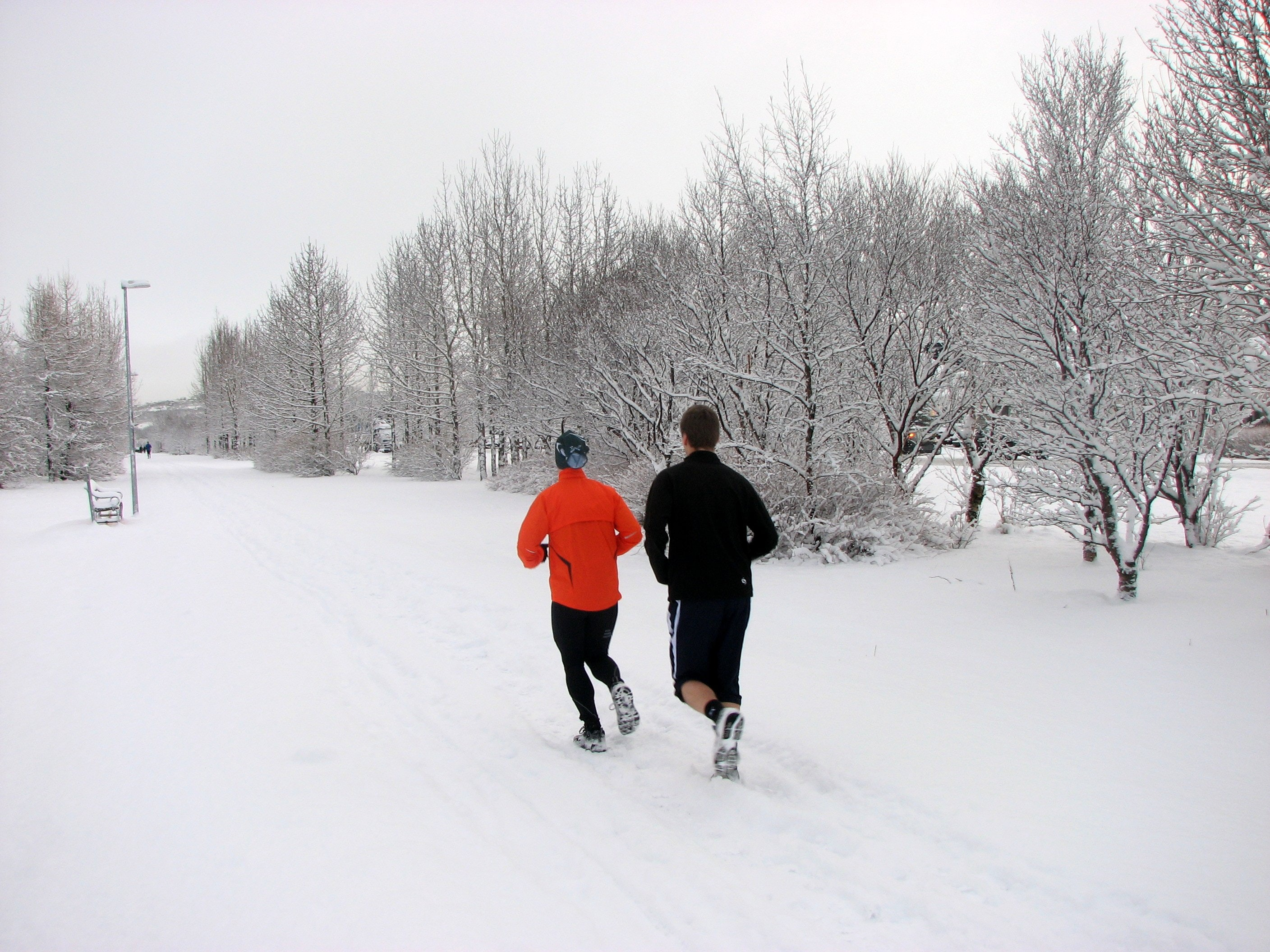 two persons running on snow field near trees