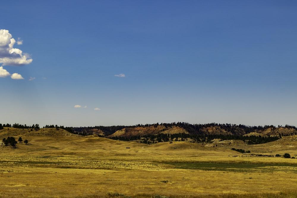 landscape photography of farm road