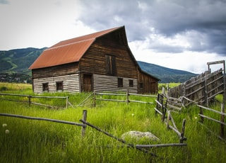 brown and white wooden barn near fence with animal during daytime