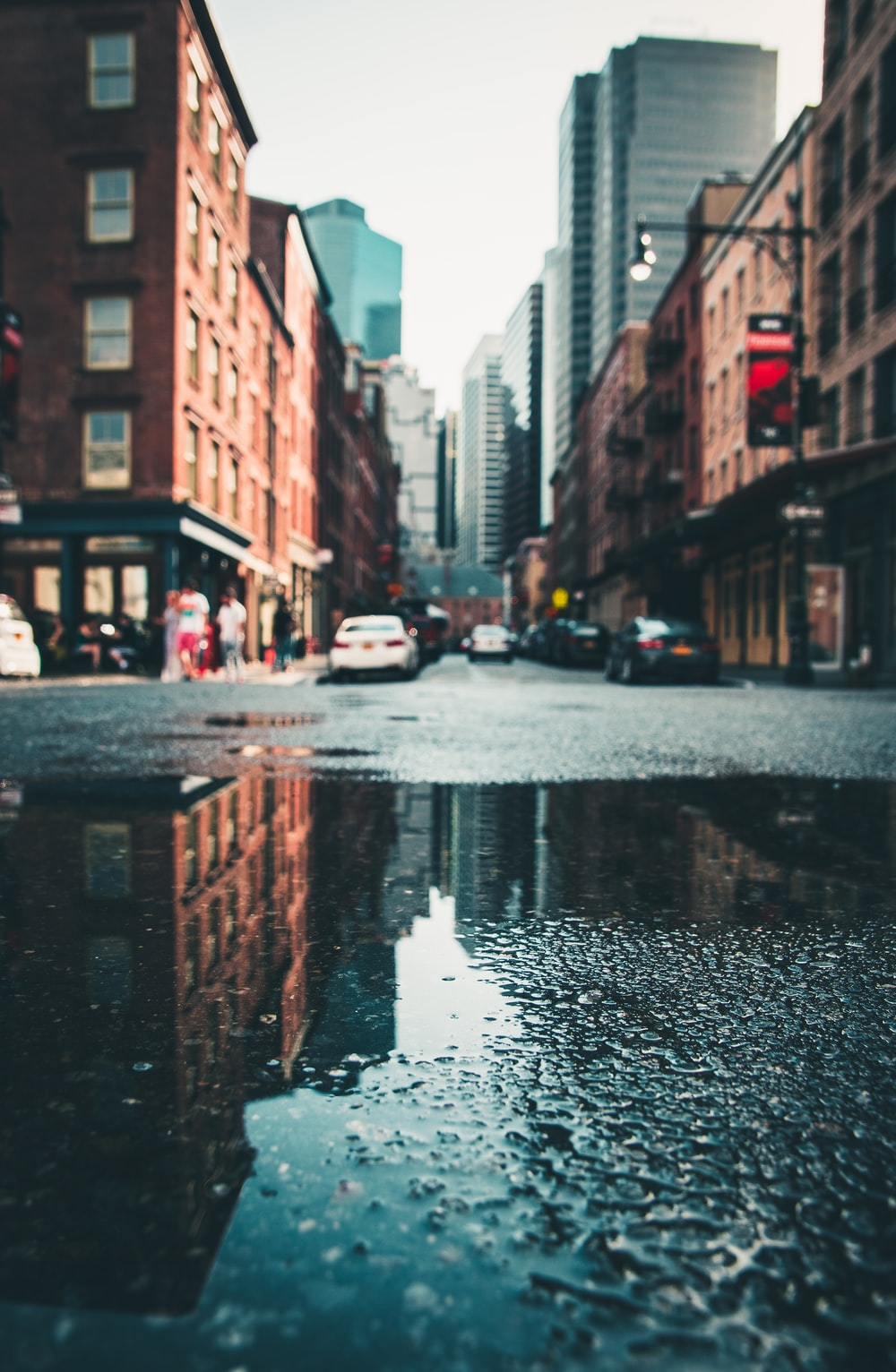 cars parked on wet city street
