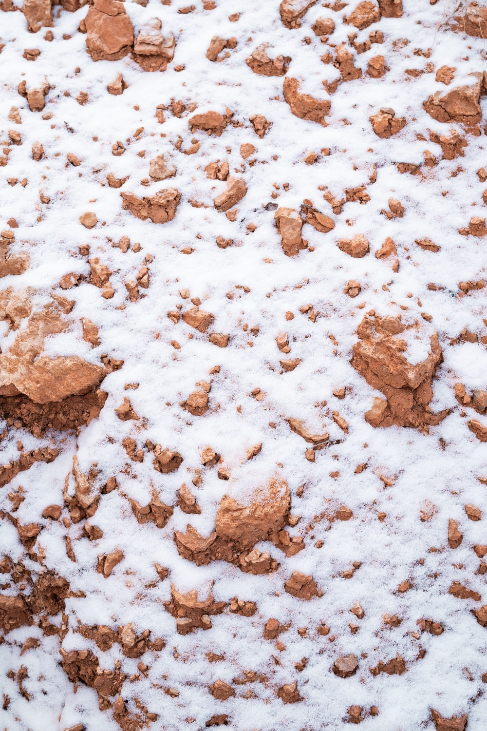snow on brown dirt