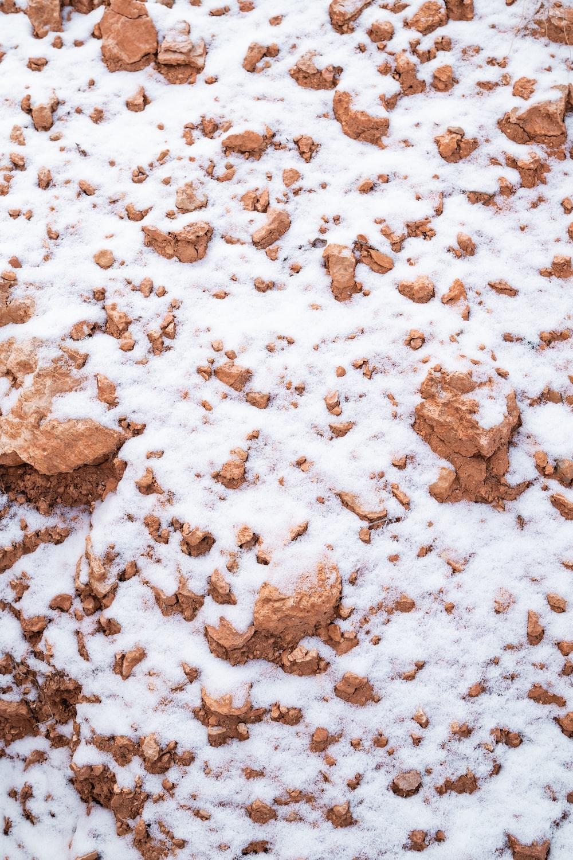 snow on brown dirt
