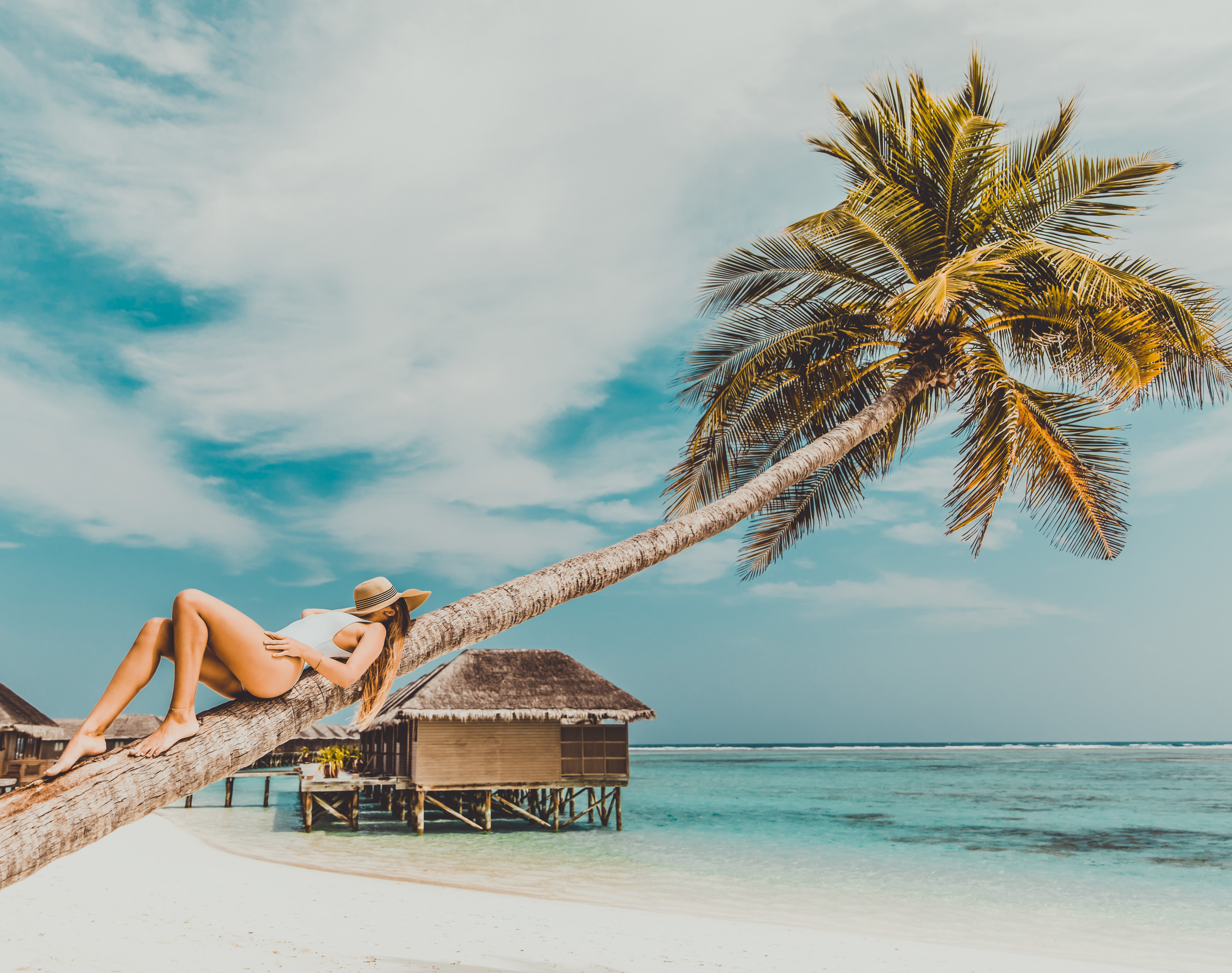 woman lying on coconut tree trunk at beach