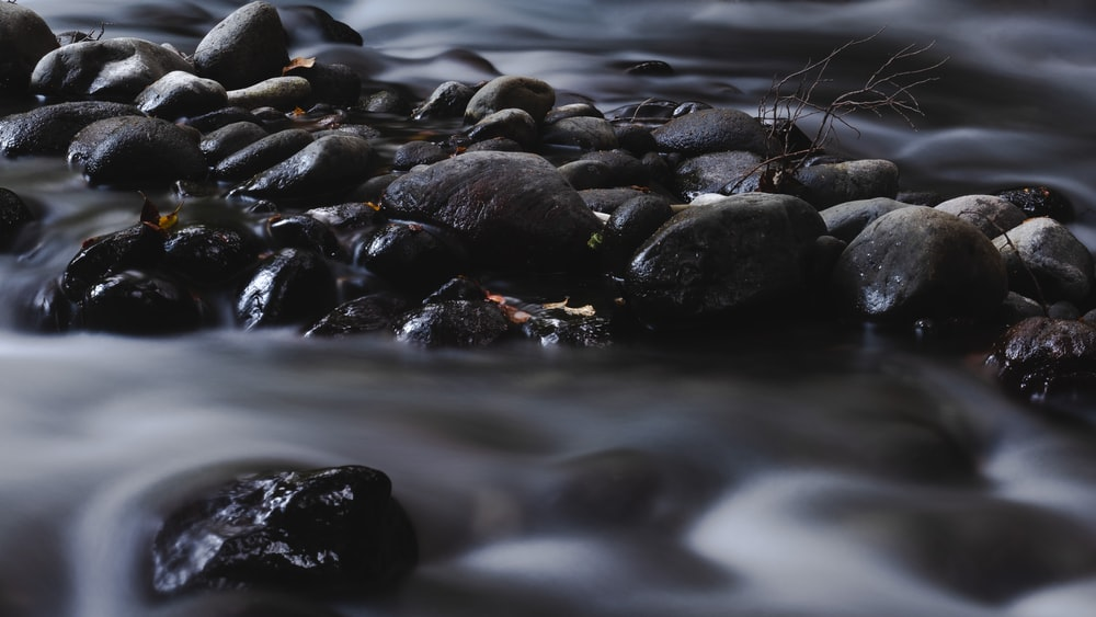 shallow focus photography of pebbles on water