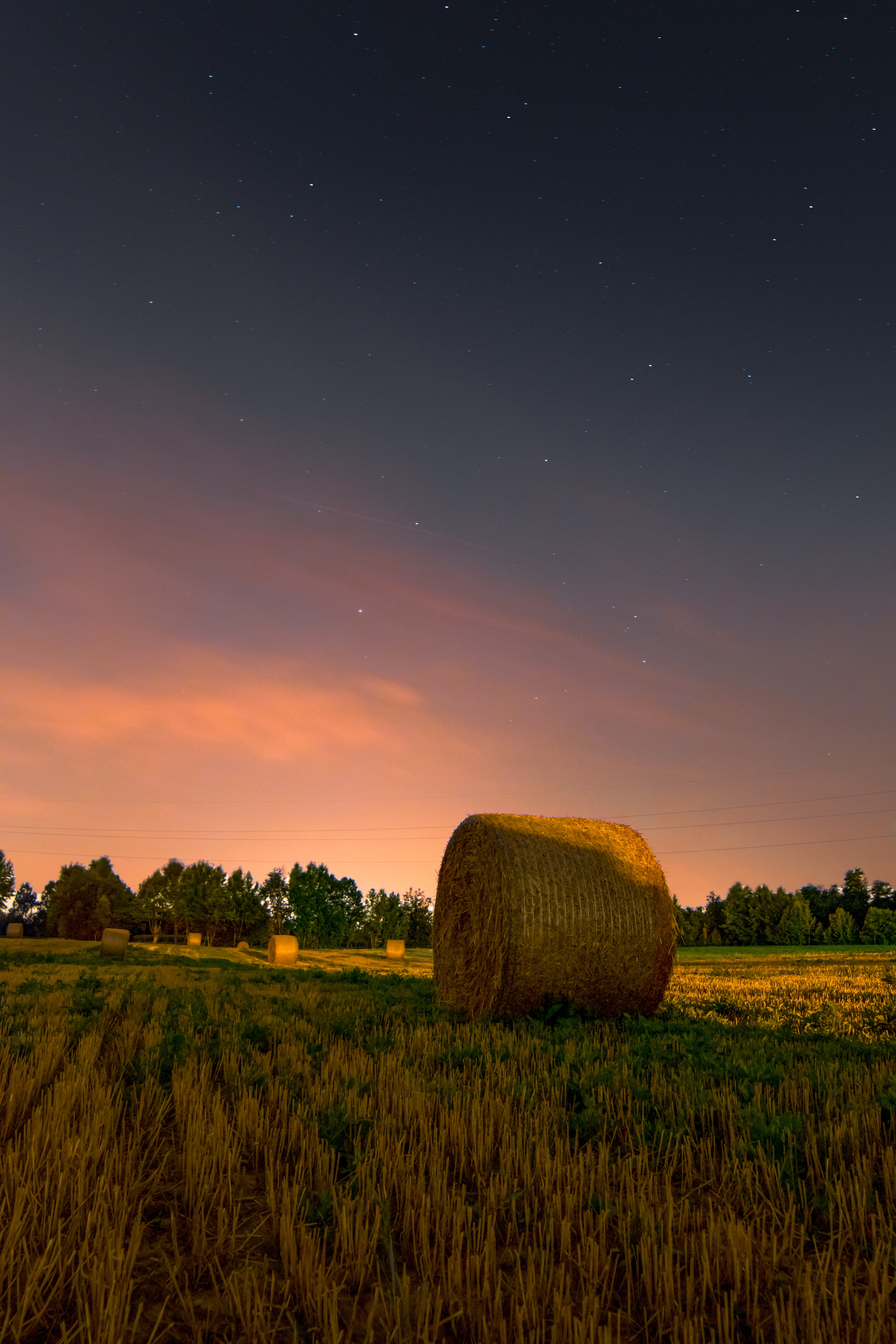 brown hay and clear sky at night