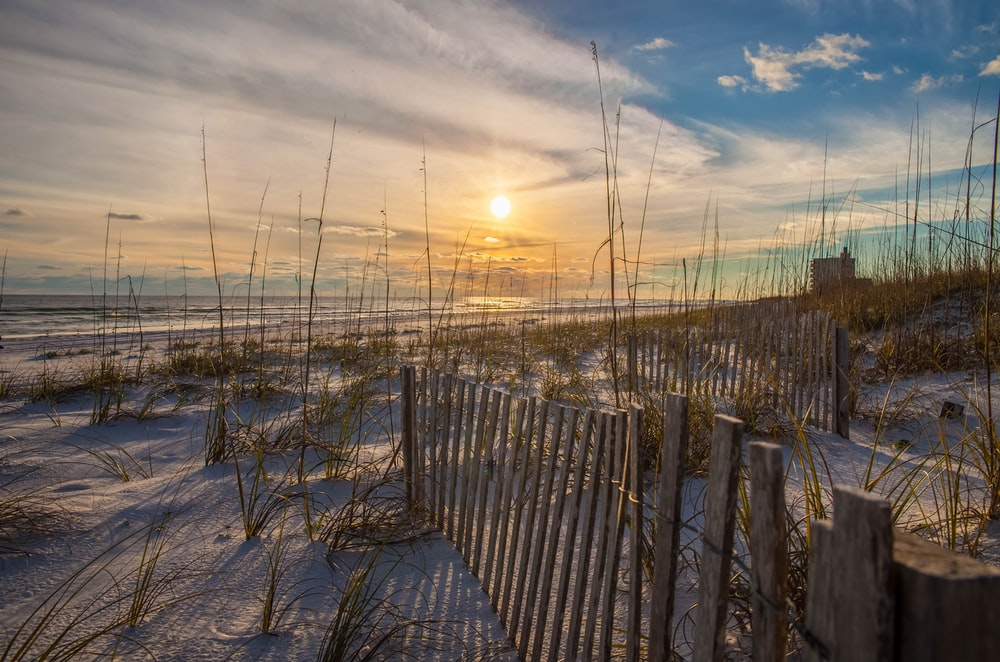 gray wooden fence at shore during golden hour